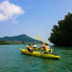 Kayaking in Mangrove_14